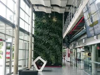 Kubik Lab Jardines modernos: Ideas, imágenes y decoración