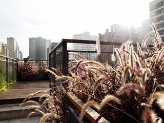Bruxelas Camila Vicari Arquitetura da Paisagem Modern Terrace