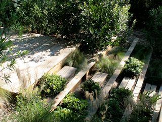 Mer végétale Anthemis Bureau d'Etude Paysage Jardin moderne