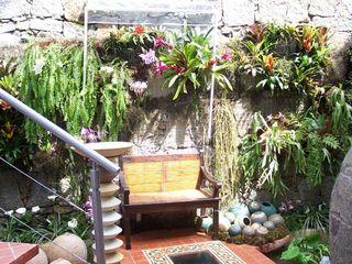 Emmilia Cardoso Designers Associados Country style garden