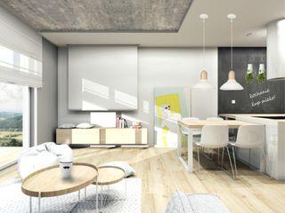 Architekt wnętrz Klaudia Pniak Comedores de estilo moderno