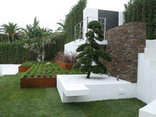 Jardines Japoneses -- Estudio de Paisajismo Сад