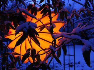 Der Barlooon - Lampion im Winter / Impressionen aus der kalten Jahreszeit Barlooon Germany GmbH Balkon, Veranda & TerrasseBeleuchtung Gelb