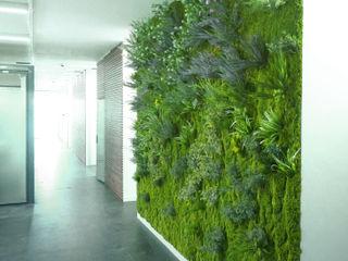 """Barcelona, central del grupo Goretex. 7 Jardines verticales sintéticos """"Muros Frescos"""" Muros Frescos Paredes y suelos de estilo moderno"""