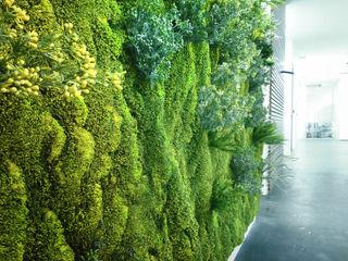 """Barcelona, central del grupo Goretex. 7 Jardines verticales sintéticos """"Muros Frescos"""" Muros Frescos Salas multimedia de estilo moderno"""