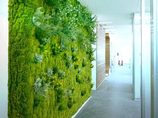 """Barcelona, central del grupo Goretex. 7 Jardines verticales sintéticos """"Muros Frescos"""" Muros Frescos Jardines de estilo moderno"""