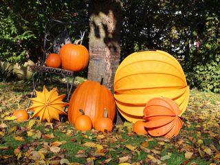 Der Barlooon als Gartendekoration im Herbst Barlooon Germany GmbH GartenAccessoires und Dekoration Orange