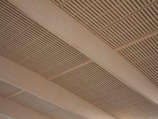Imola Legno S.p.A. socio unico Modern gym Wood