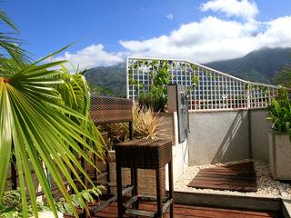 Arq Renny Molina Modern style gardens