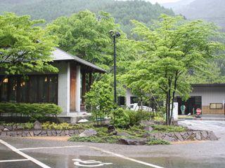 木曽K館 庭のクニフジ 庭院