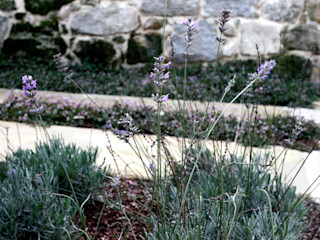 RUTH GUNDÍN VILLAR Taman Gaya Country