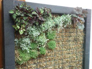 L&S arquitectos Garden Fencing & walls