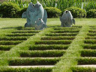 Ecossistemas Сад