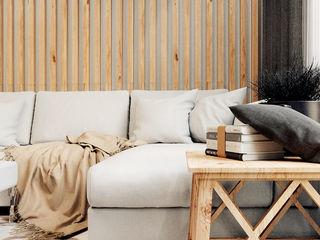 IK-architects Salon scandinave