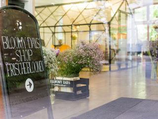 Bloomy Days GmbH Estudios y despachos de estilo moderno