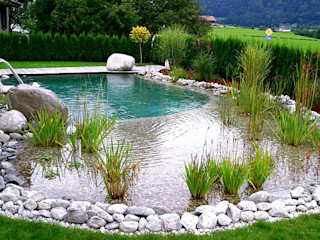 Bio Göl Havuz (Biyolojik Gölet ve Havuz Yapısalları) Pool