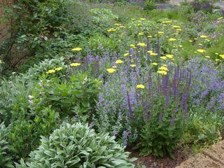 ServiceWohnen Coburg-Cortendorf KAISER + KAISER - Visionen für Freiräume GbR GartenPflanzen und Blumen