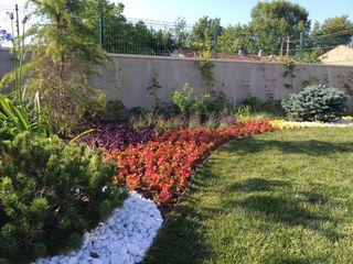 V.A ÖZEL KONUT PEYZAJ Projelendirme & Uygulama konseptDE Peyzaj Fidancılık Tic. Ltd. Şti. Modern Bahçe