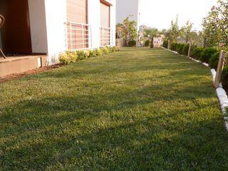 A.N KONUTU HAZIR RULO ÇİM UYGULAMASI konseptDE Peyzaj Fidancılık Tic. Ltd. Şti. Modern Bahçe