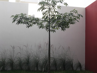 Arquimia Arquitectos Modern garden