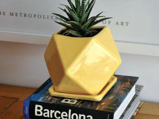 Bizcocho HouseholdPlants & accessories Pottery White