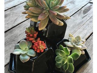 Bizcocho HouseholdPlants & accessories Pottery Black