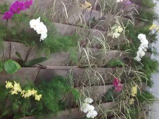 Borges Arquitetura & Paisagismo JardinFleurs & Plantes