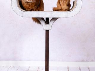 Design Kratzmöbel cat-on WohnzimmerAccessoires und Dekoration Holz Schwarz