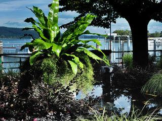 TRIFOLIA 2016 MASSIMO SEMOLA PROGETTAZIONE GIARDINI MILANO Giardino moderno