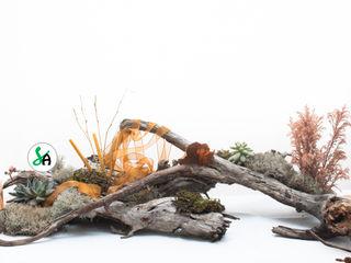 Sublim Ambiente Modern dining room Wood Wood effect