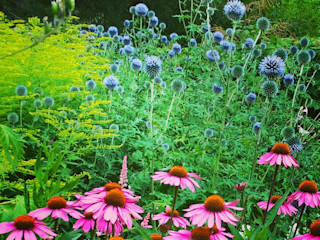 grasgrau - GARTENDESIGN Classic style garden Purple/Violet