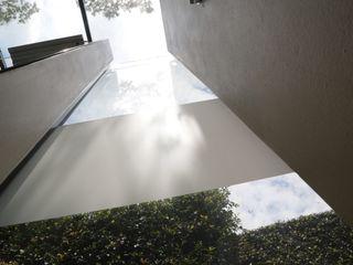 AOJ | Architecture & Interiors Modern windows & doors