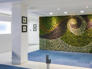 arQing Kantor & Toko Modern Plastik Green
