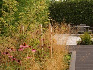 Garden Design Poynton Hannah Collins Garden Design Taman Modern