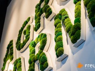 Freund GmbH Interior landscaping Green