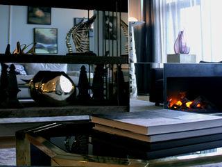 Joe Ginsberg Design Modern living room