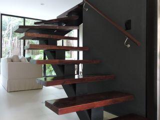 Vau Studio Tropical style dining room Wood effect