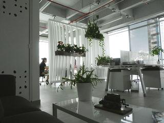 Oficinas Easy Legal interior137 arquitectos Oficinas y Tiendas Metal Blanco