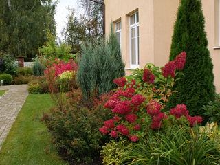 ПАН Ландшафт Classic style garden