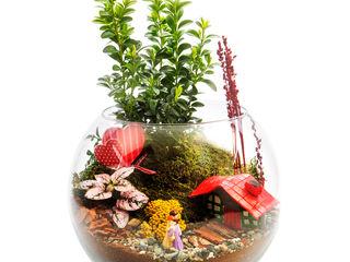 Bahçehane 花園植物盆栽與花瓶 玻璃 Multicolored