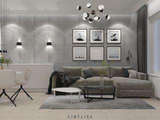 SIMPLIKA Salones de estilo minimalista Hormigón Gris