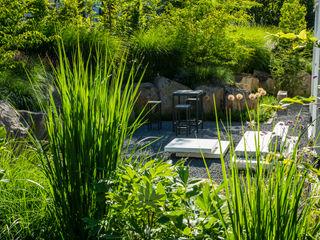 Grüne Oase - perfekter Sichtschutz GartenLandschaft Berg & Co. GmbH Moderner Garten