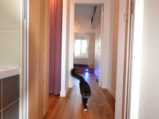 Rénovation et aménagement d'un appartement de 65 m² Agence VOLUMES & SURFACES Couloir, entrée, escaliers modernes Blanc