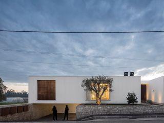 CONTAMINAR Modern houses