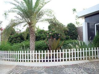 iammies Landscapes Mediterranean style garden Green