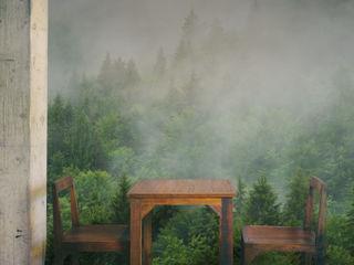Forest Bathing Pixers غرفة السفرة