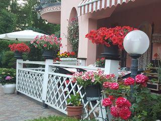 MARA GAGLIARDI 'INTERIOR DESIGNER' สวนหน้าบ้าน