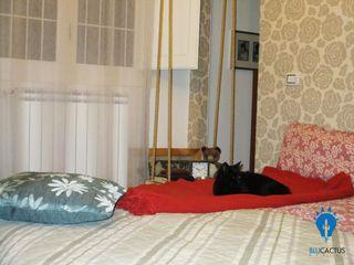 blucactus design Studio BedroomAccessories & decoration