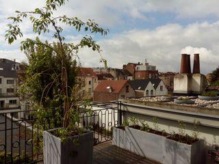 Terrasse de 30m2 et toiture de 30m2 en ville Urban Garden Designer Balcon, Veranda & TerrassePlantes et fleurs Bois