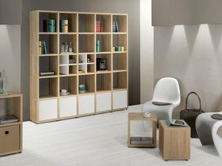Bookshelves Regalraum UK Коридор Дерев'яні